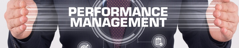 Designing and Implementing a Performance Management System Training Courses