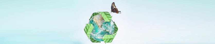 Waste Management: A Modern and Sustainable Approach Training Courses