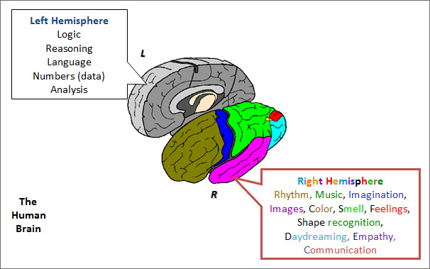 Optimizing the Brain when Managing Project Tasks and Teams