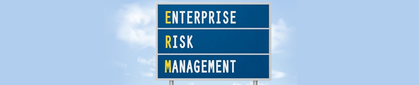 Enterprise Risk Management Bootcamp Training Courses in