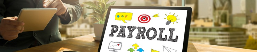 Payroll: Preparation, Analysis and Management Training Courses in Dubai