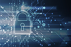 Certificate in Information Security Management Principles - Virtual Learning