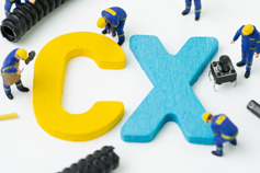 ISM Endorsed Customer Experience (CX) and Brand Activation Professional - Virtual Learning