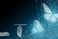 Digital Transformation Masterclass