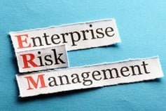 Enterprise Risk Management - Virtual Learning