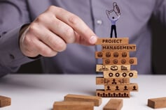 Project Portfolio Management: Skills and Techniques - Virtual Learning
