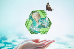 Waste Management: A Modern and Sustainable Approach